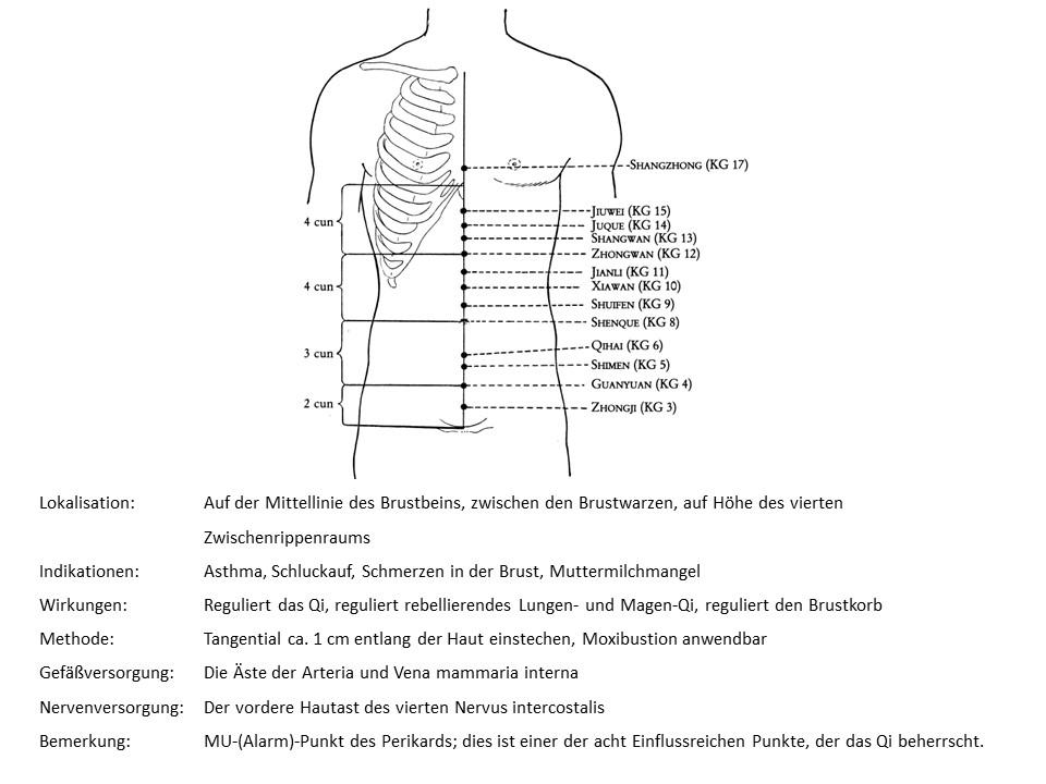 Akupunkturpunkt KG 17