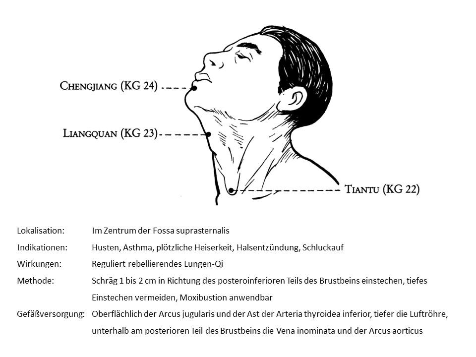 Akupunkturpunkt Konzeptionsgefäß 22