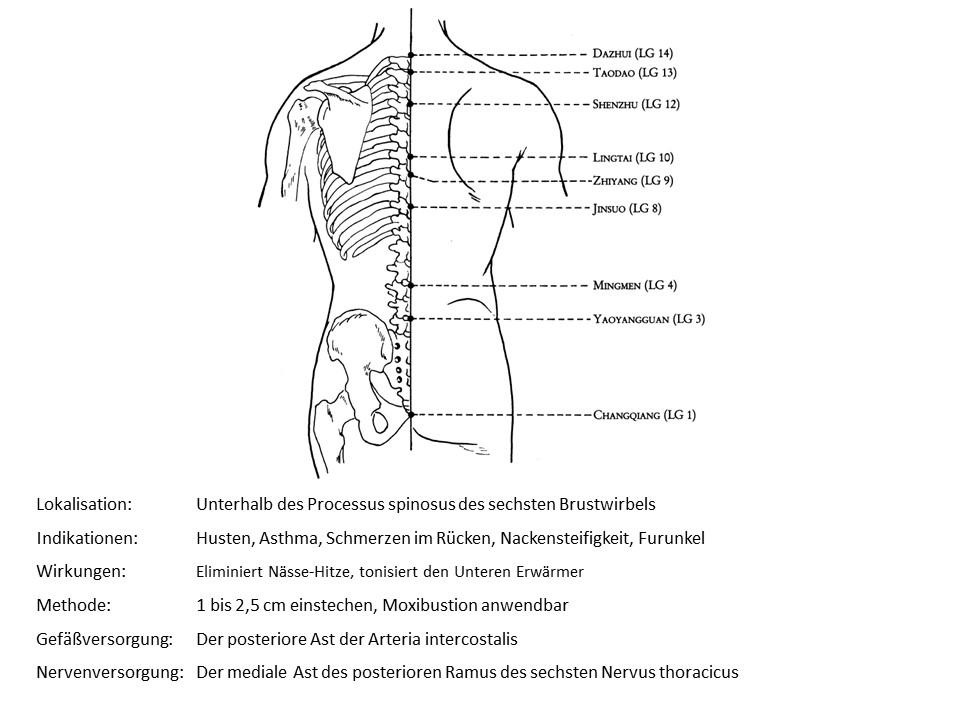 Akupunkturpunkt Lenkergefäß 10