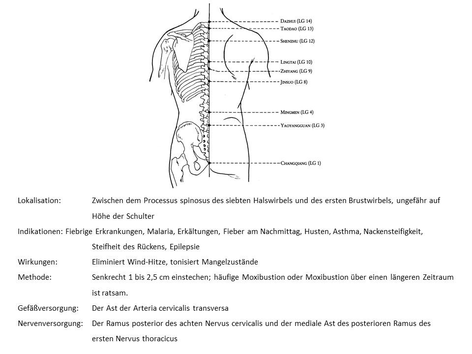 Akupunkturpunkt Lenkergefäß 14