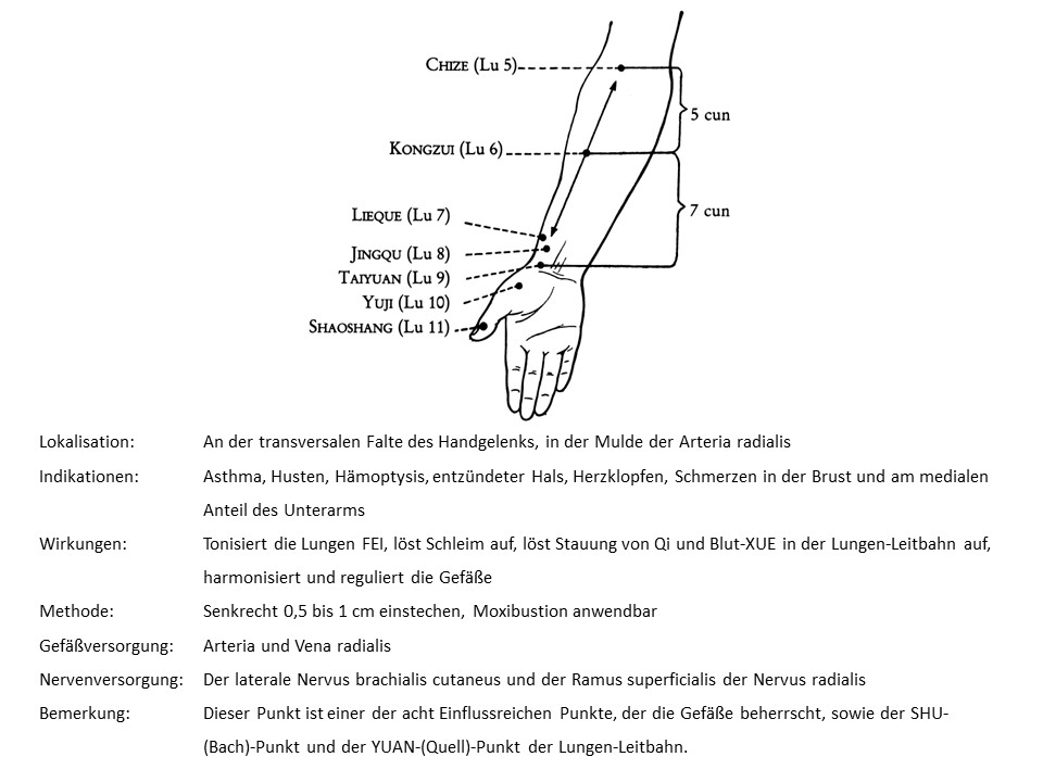Akupunkturpunkt Lunge 9