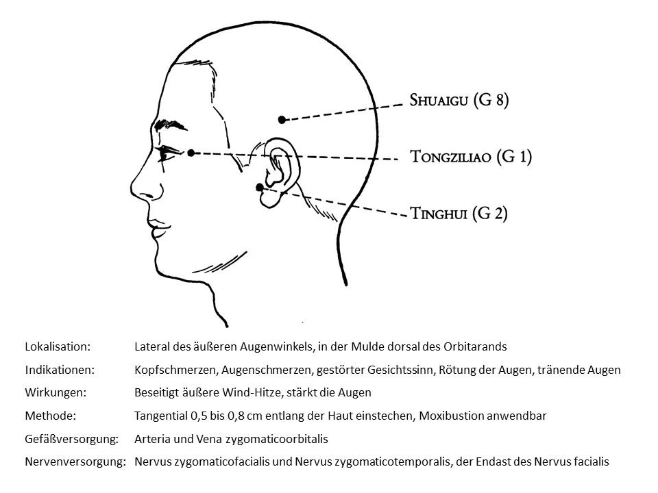 Akupunkturpunkt Gallenblase 1