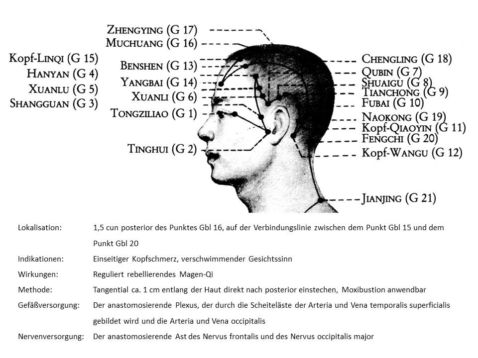 Akupunkturpunkt Gallenblase 17