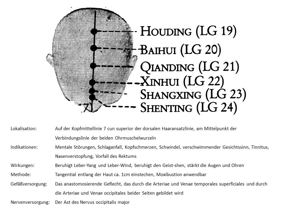 Akupunkturpunkt Lenkergefäß 20