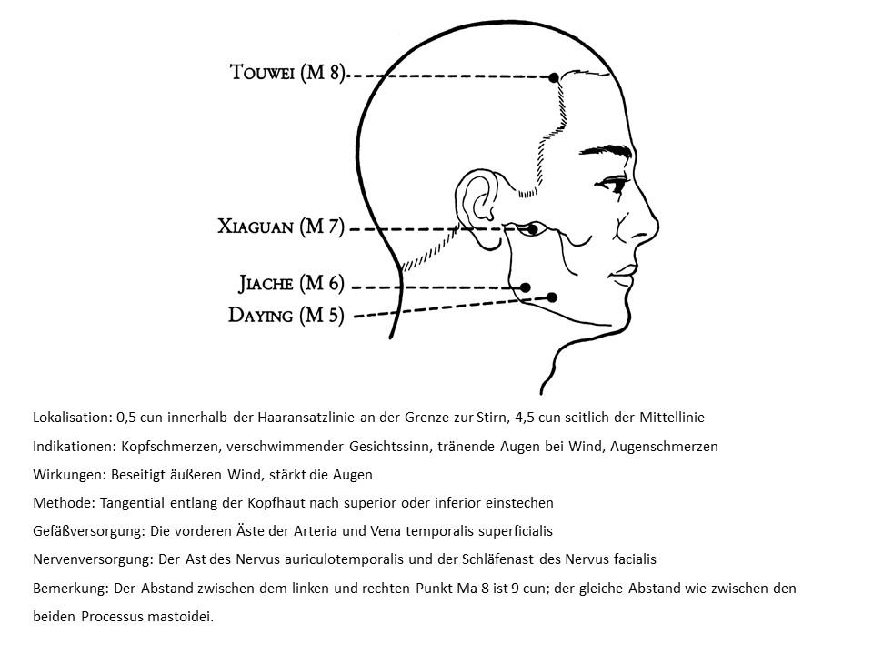 Akupunkturpunkt Magen 8