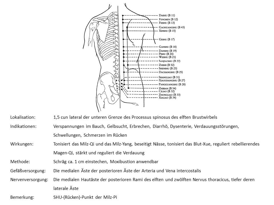 Akupunkturpunkt Blase 20