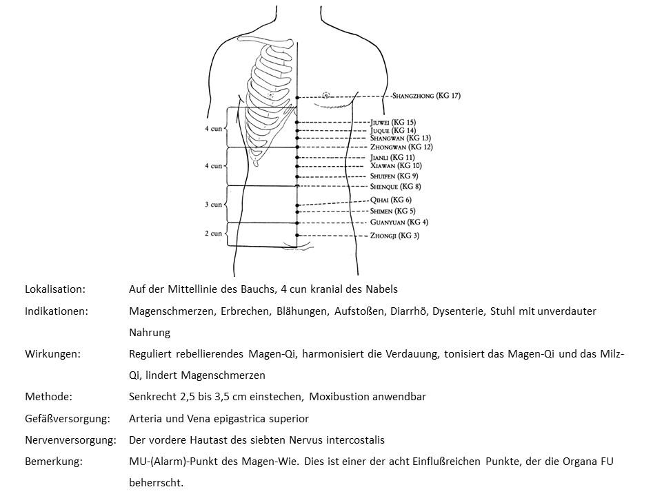 Akupunkturpunkt KG 12