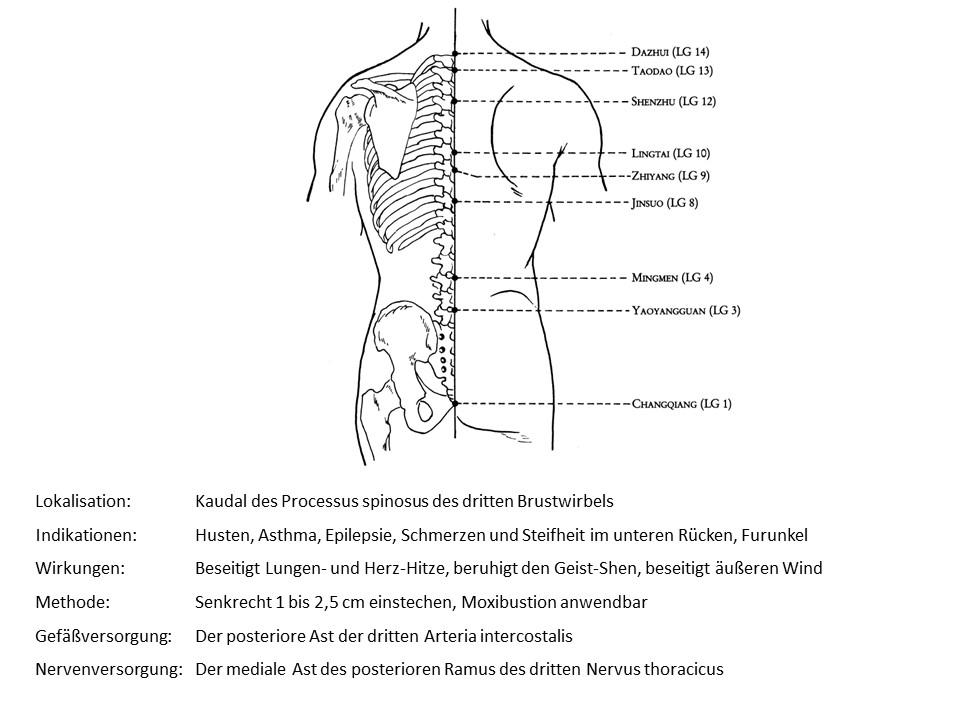 Akupunkturpunkt LG 12