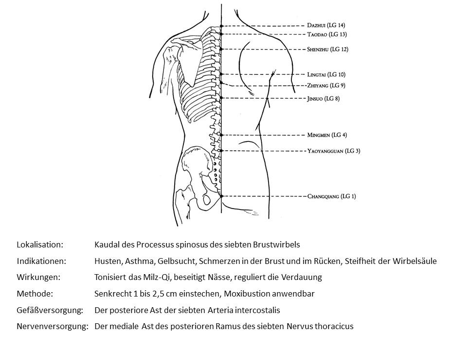 Akupunkturpunkt Lenkergefäß 9