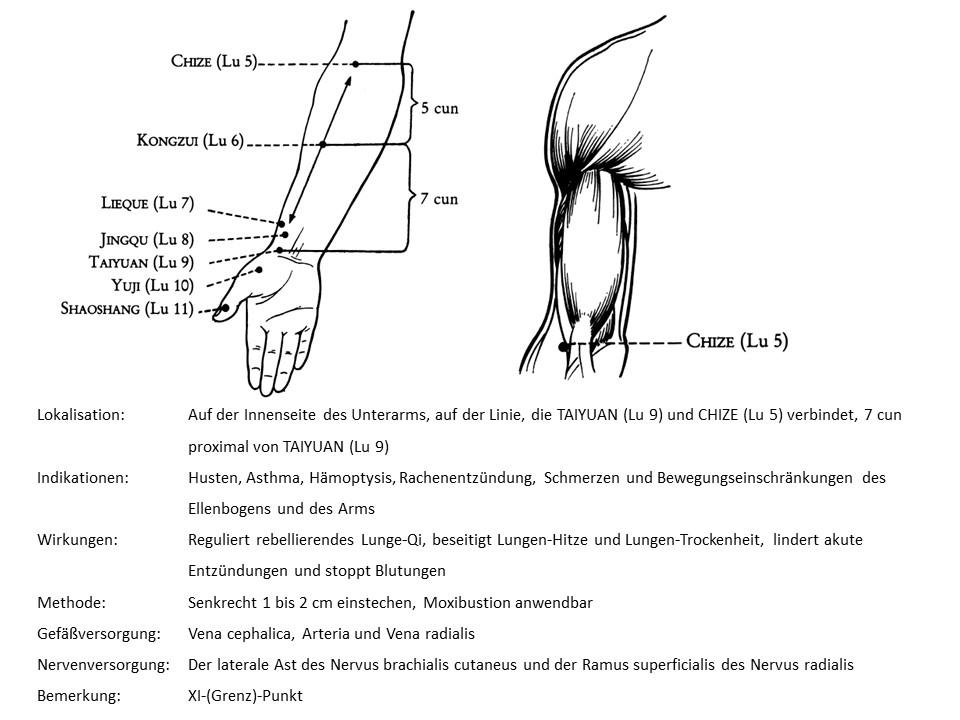 Akupunkturpunkt Lunge 6