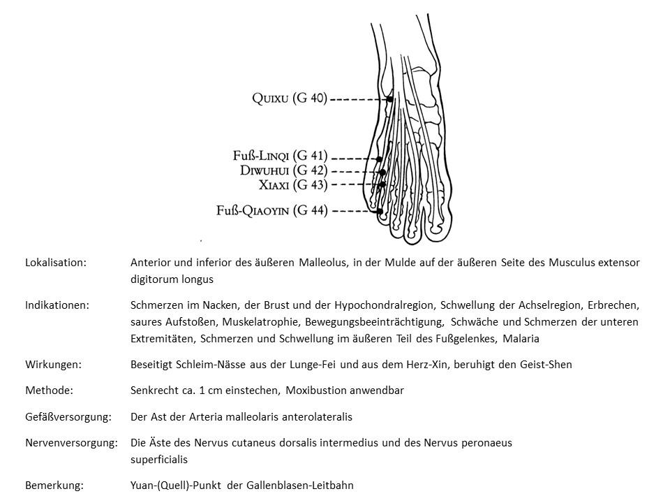 Akupunkturpunkt Gallenblase 40