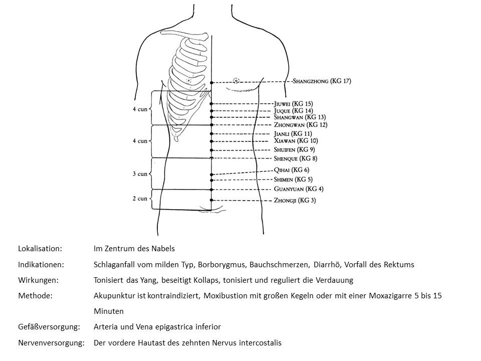 Akupunkturpunkt Konzeptionsgefäß 8