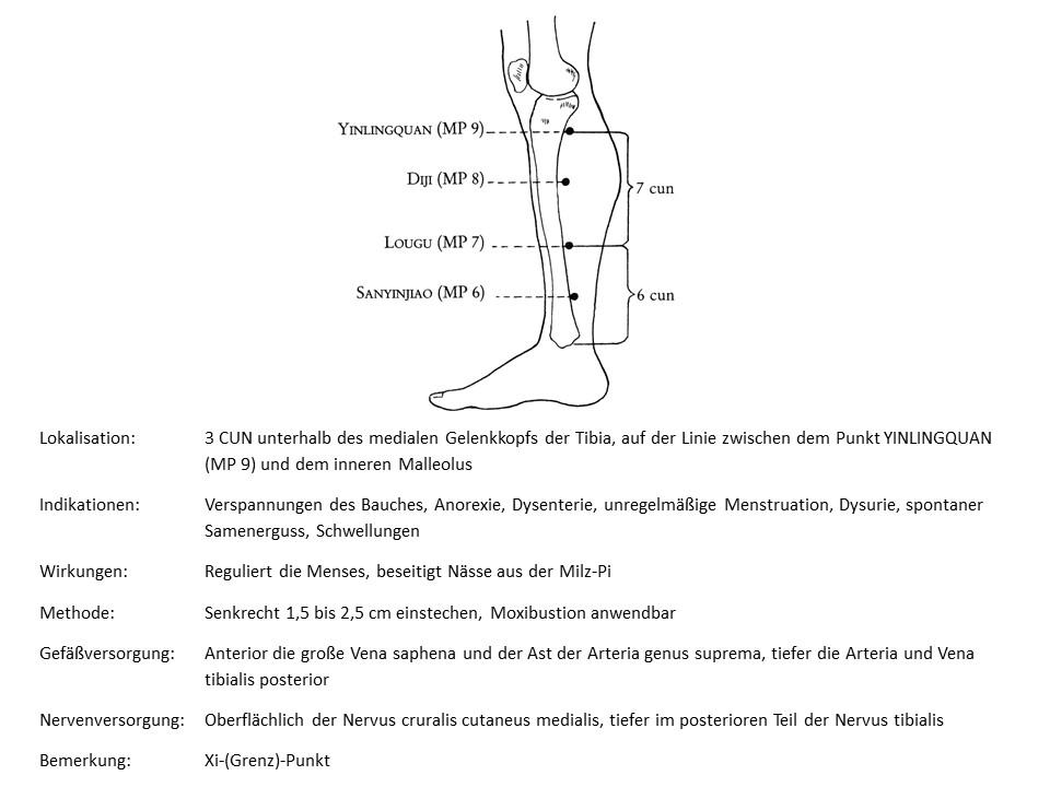 Akupunkturpunkt Milz 8