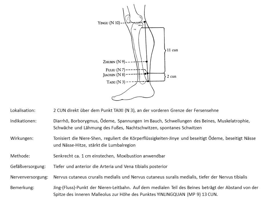 Akupunkturpunkt Niere 7
