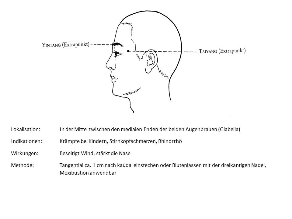 Akupunkturpunkt Yintang