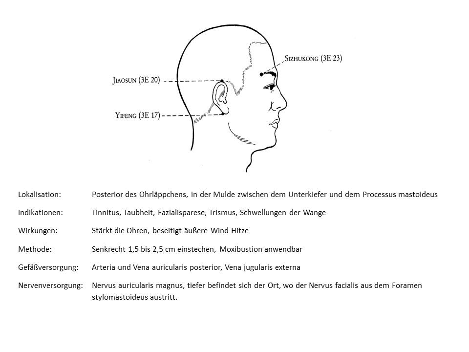 Akupunkturpunkt 3Erwärmer 17