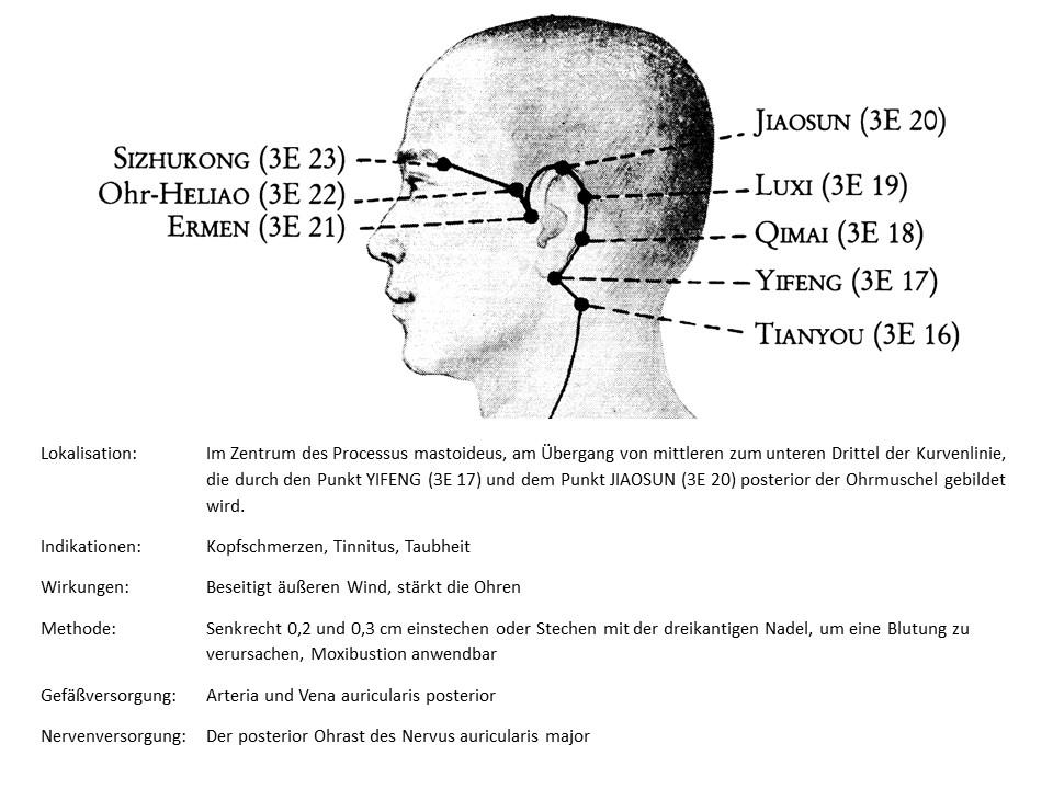 Akupunkturpunkt 3Erwärmer 18