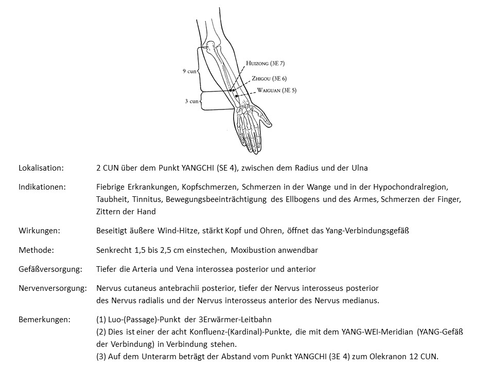 Akupunkturpunkt 3Erwärmer 5