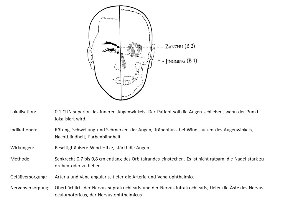 Akupunkturpunkt Blase 1