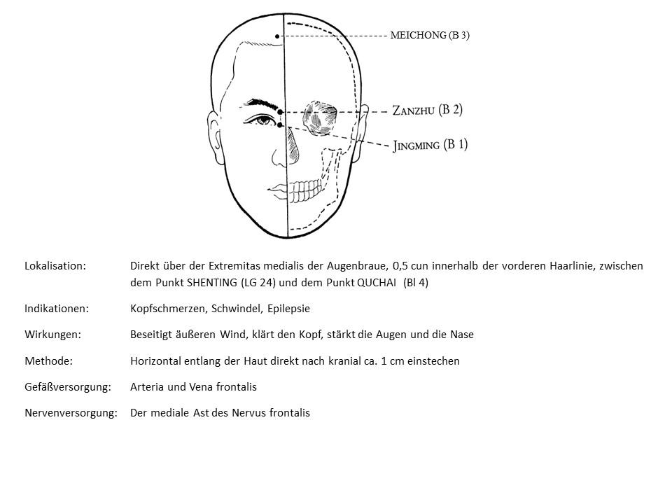 Akupunkturpunkt Blase 3