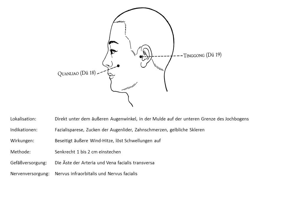 Akupunkturpunkt Dünndarm 18