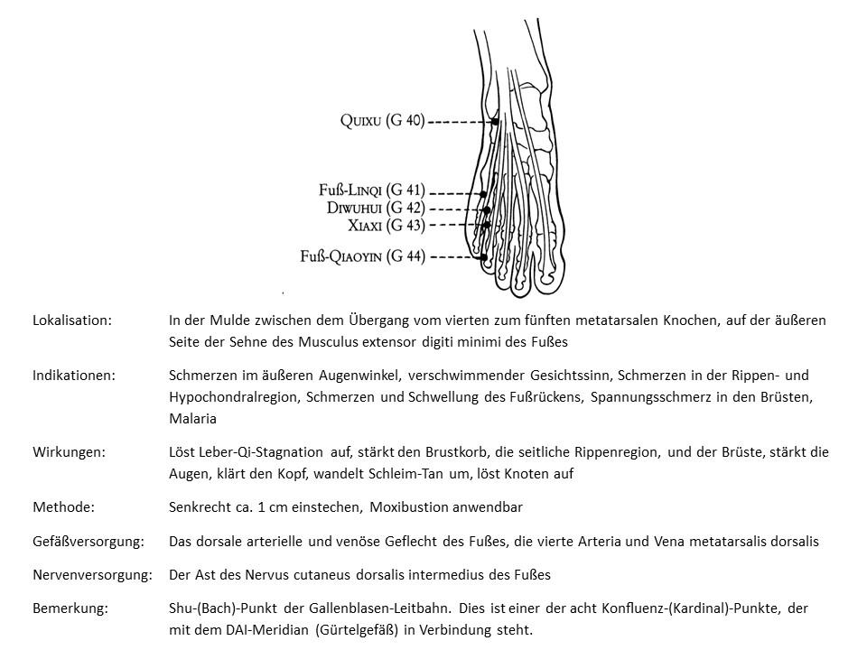 Akupunkturpunkt Gallenblase 41