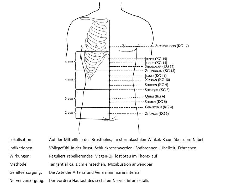 Akupunkturpunkt Konzeptionsgefäß 16