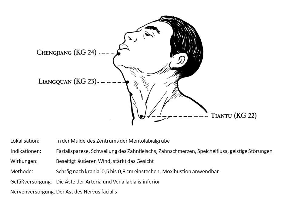 Akupunkturpunkt Konzeptionsgefäß 24