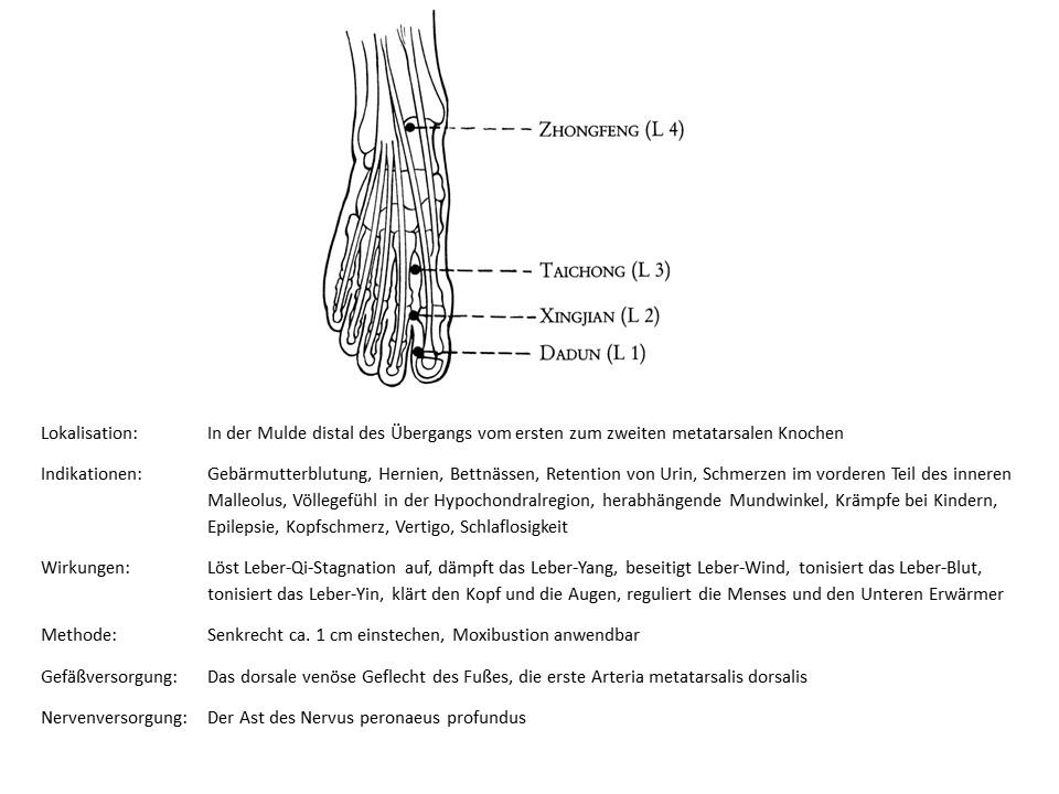 Akupunkturpunkt Leber 3