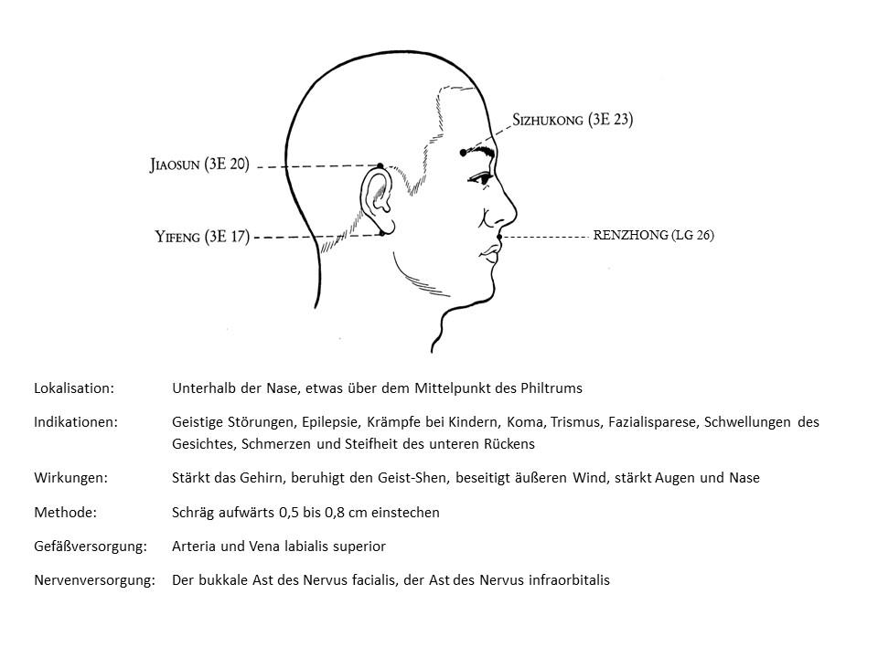 Akupunkturpunkt Lenkergefäß 26