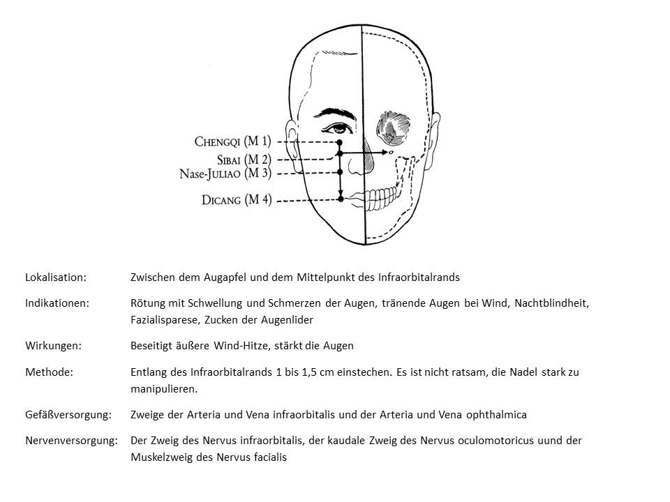 Akupunkturpunkt Magen 1