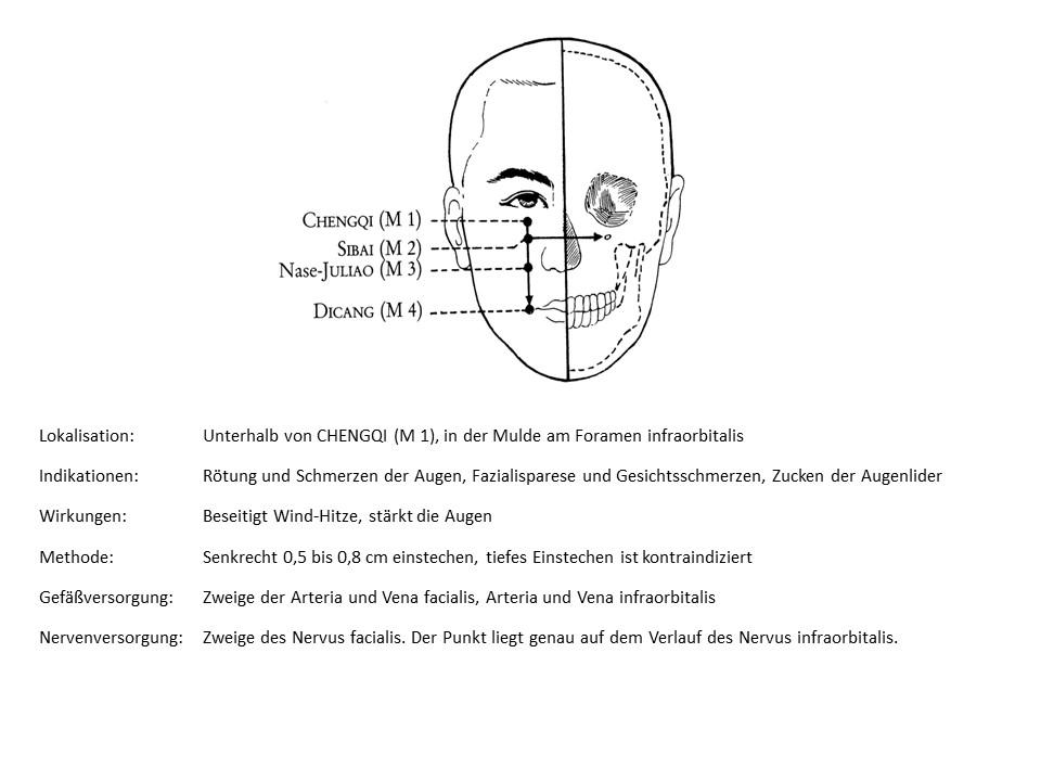 Akupunkturpunkt Magen 2