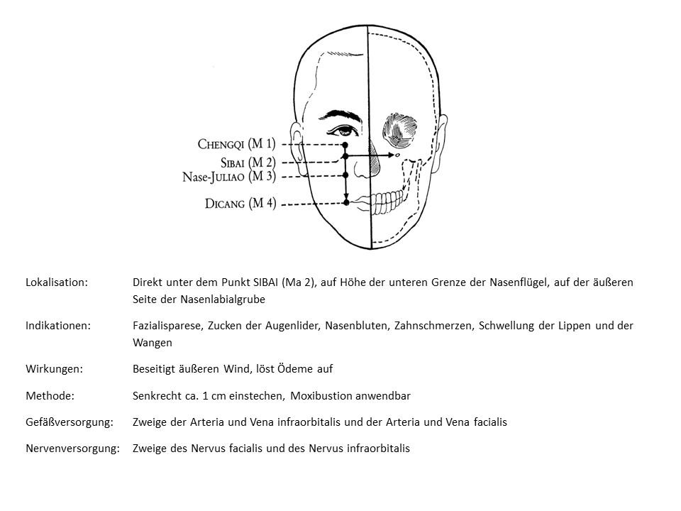 Akupunkturpunkt Magen 3