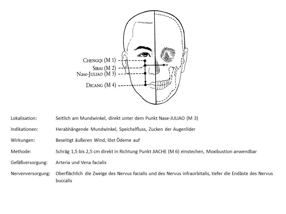 Akupunkturpunkt Magen 4