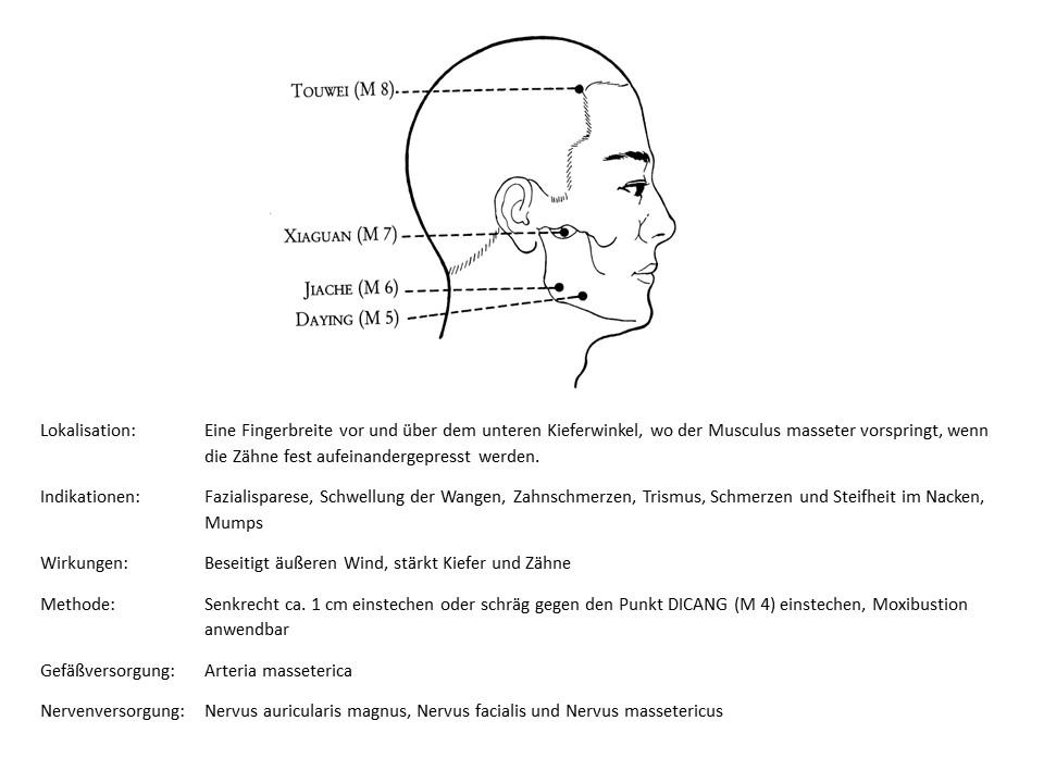Akupunkturpunkt Magen 6