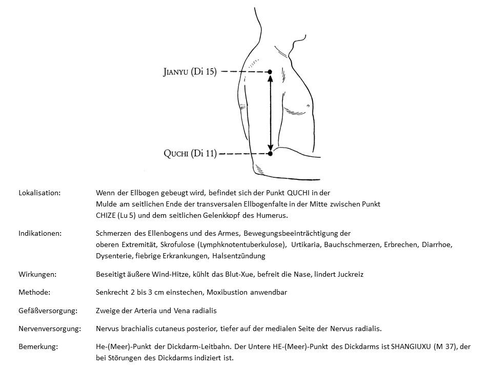 Akupunkturpunkt Dickdarm 11