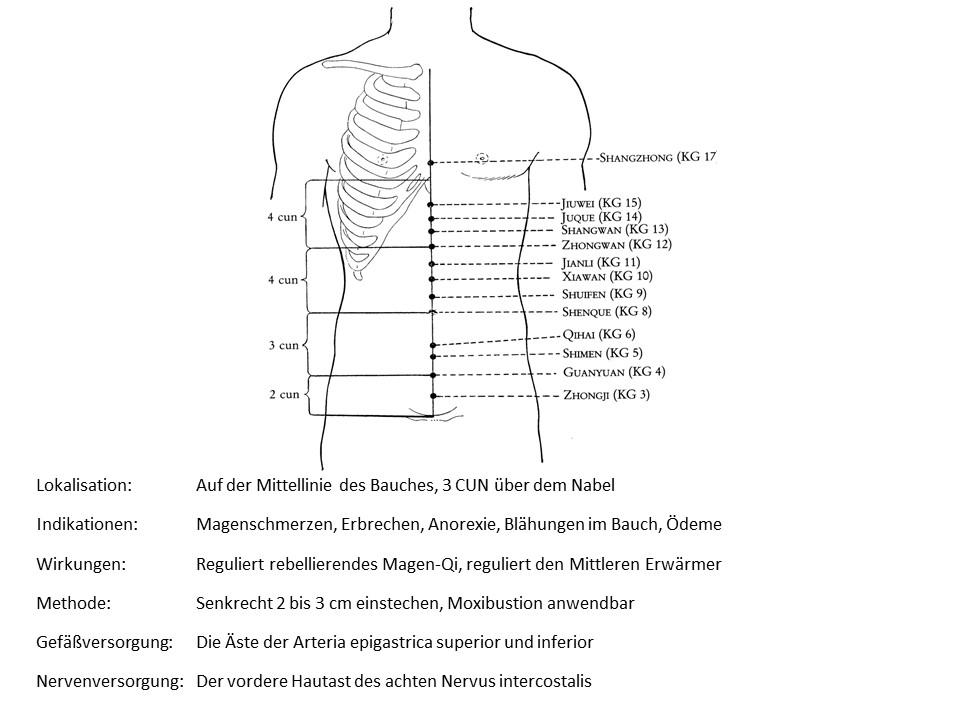 Akupunkturpunkt Konzeptionsgefäß 11