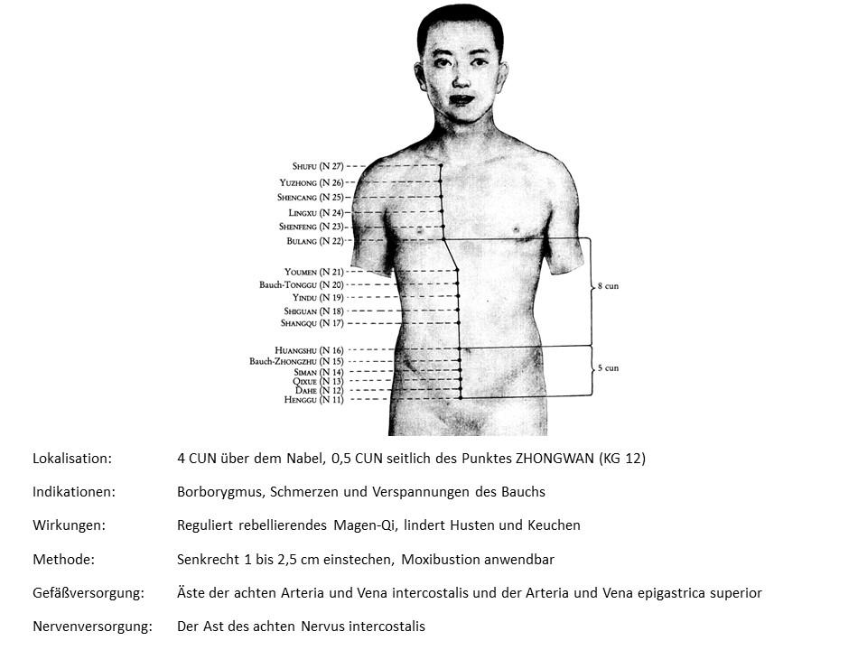 Akupunkturpunkt Niere 19