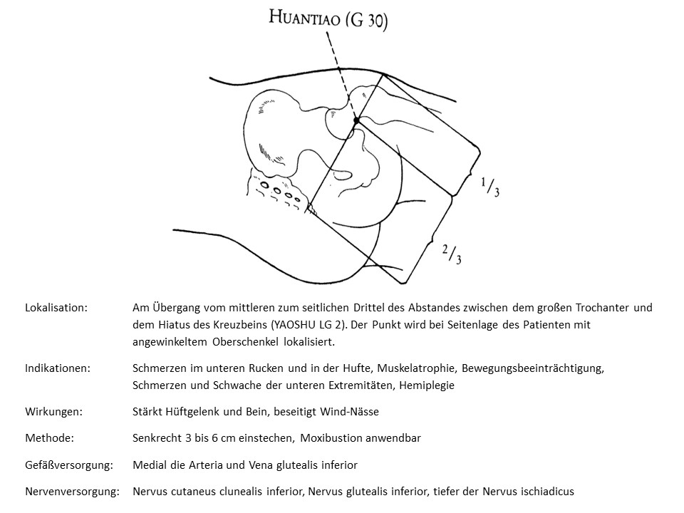 Akupunkturpunkt Gallenblase 30