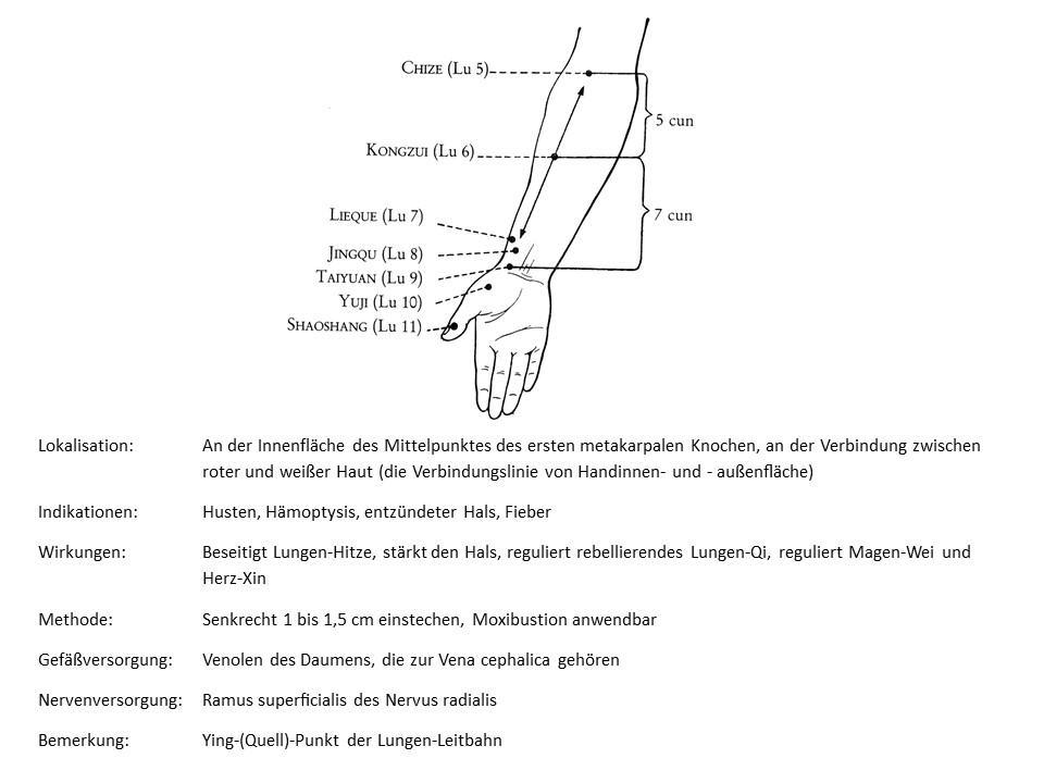 Akupunkturpunkt Lunge 10