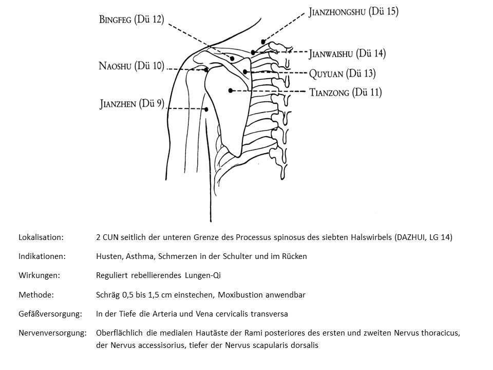 Akupunkturpunkt Dünndarm 15