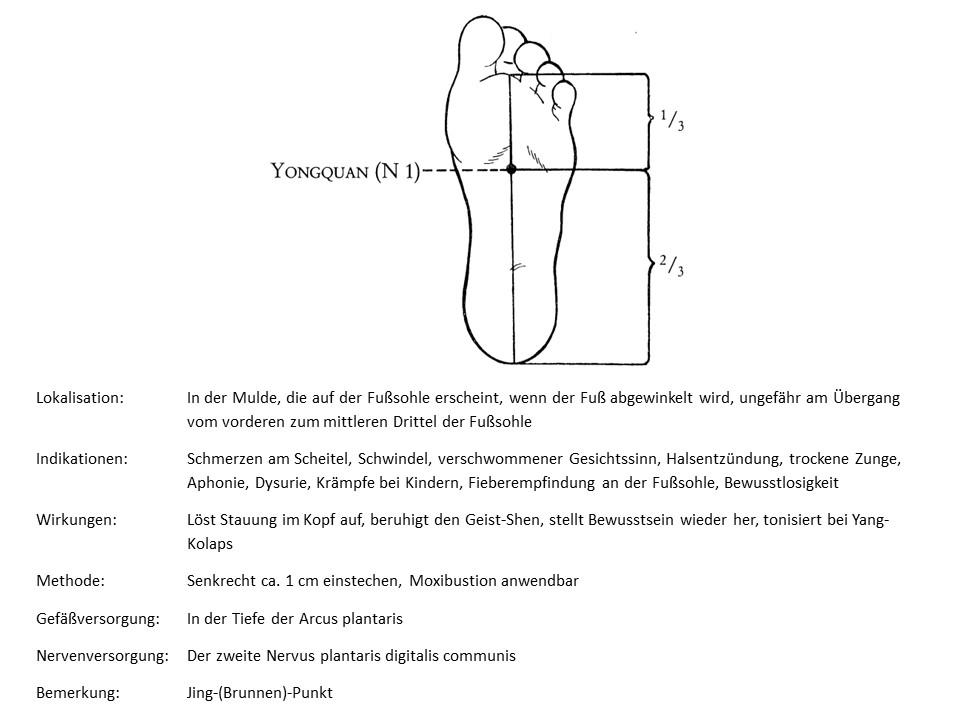 Akupunkturpunkt Niere 1