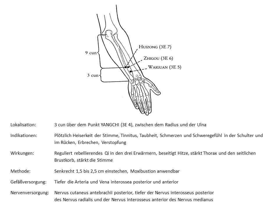 Akupunkturpunkt 3Erwärmer 6