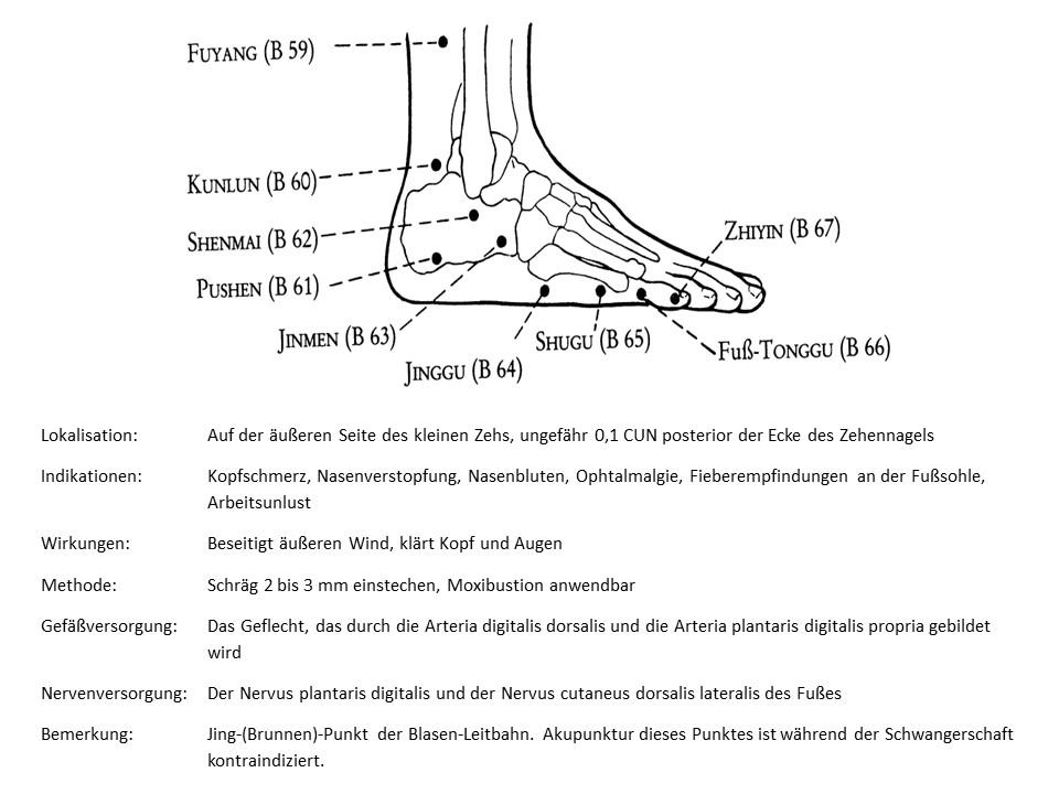 Akupunkturpunkt Blase 67