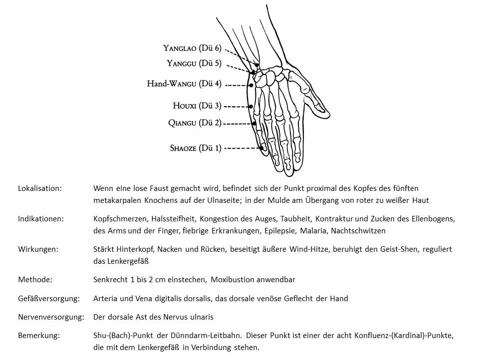 Akupunkturpunkt Dünndarm 3