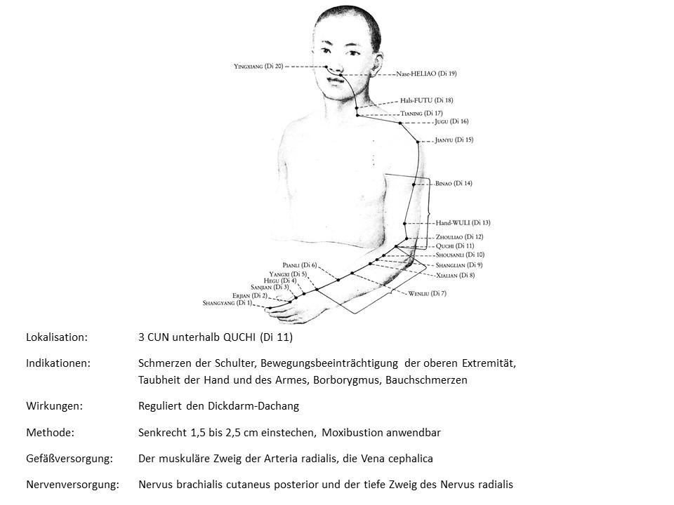 Akupunkturpunkt Dickdarm 9