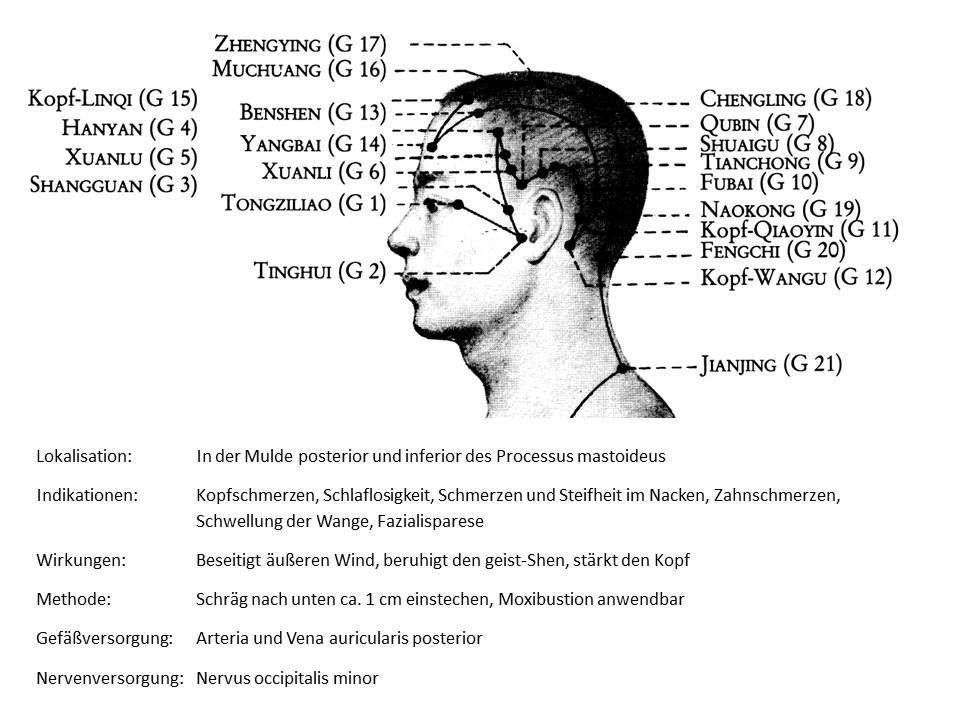 Akupunkturpunkt Gallenblase 12