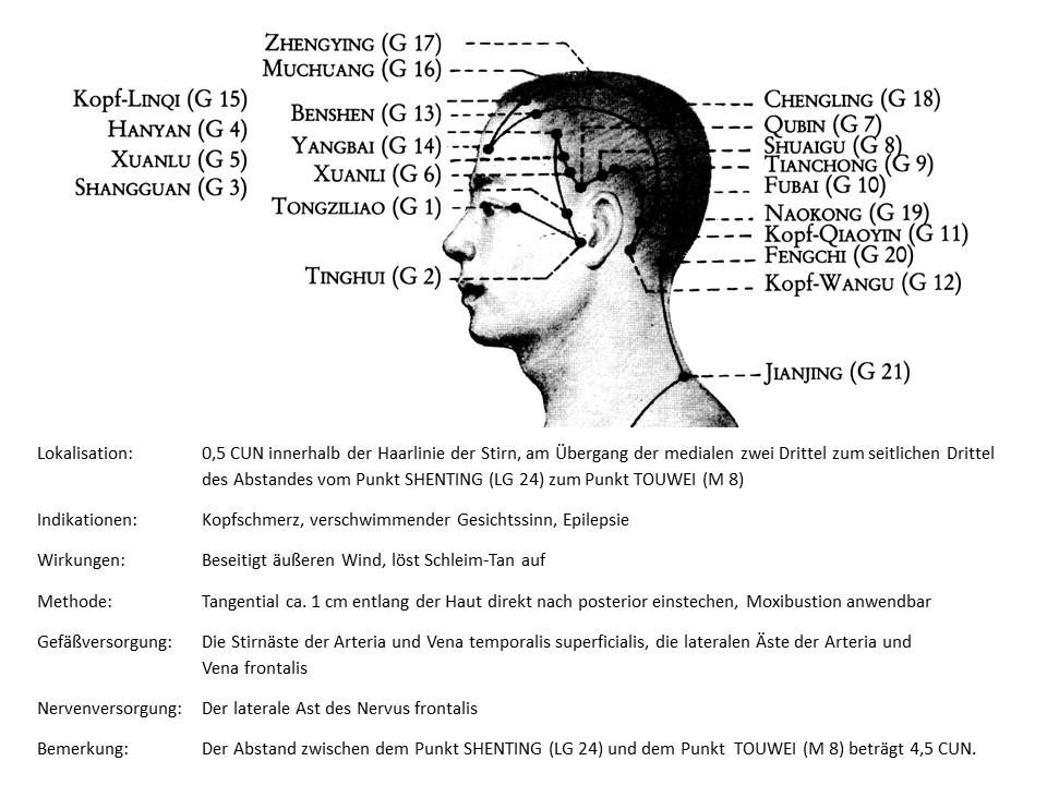 Akupunkturpunkt Gallenblase 13