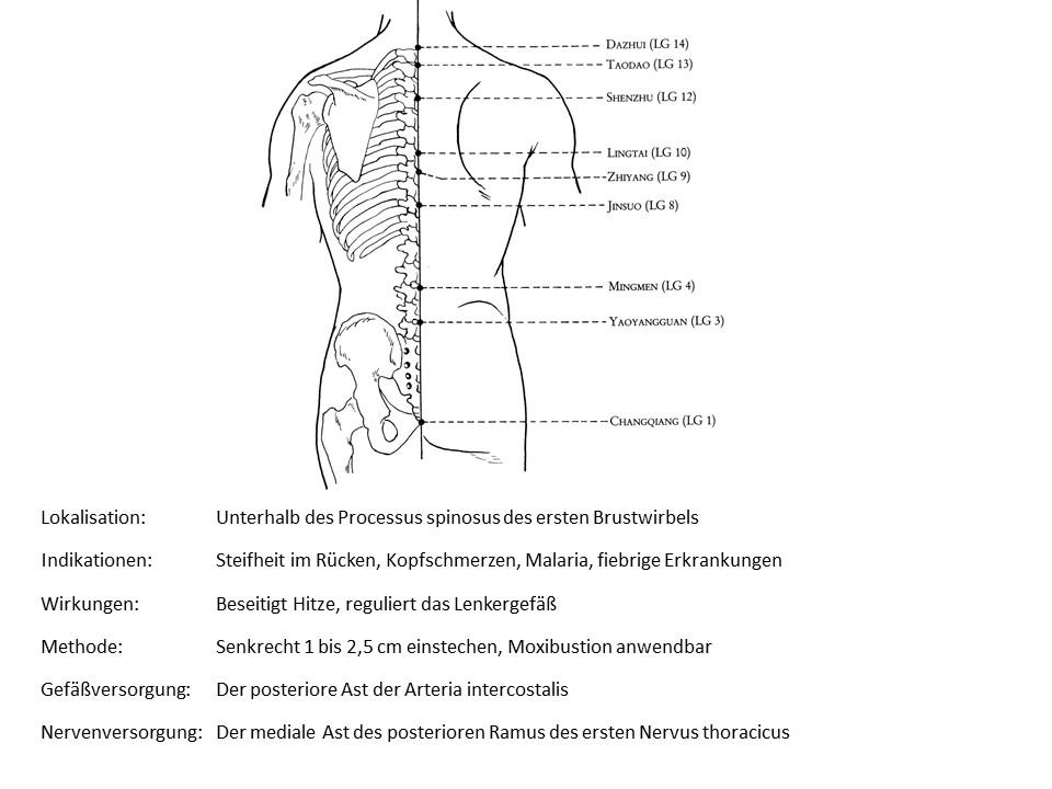 Akupunkturpunkt Lenkergefäß 13
