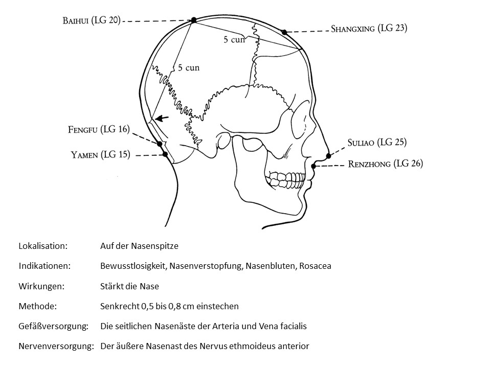 Akupunkturpunkt Lenkergefäß 25